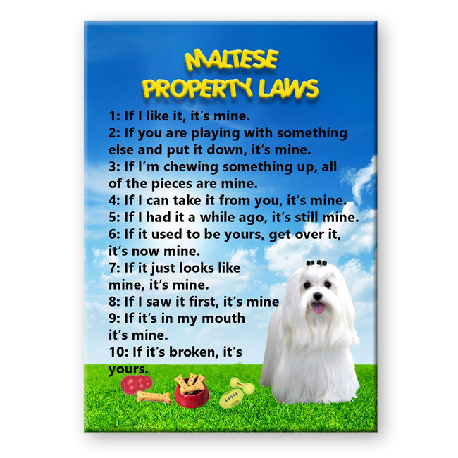 Maltese Property Laws Fridge Magnet