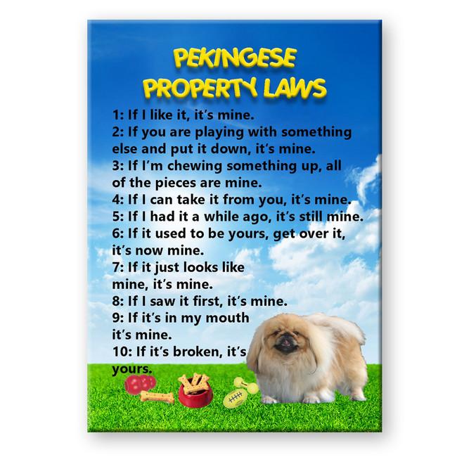 Pekingese Property Laws Fridge Magnet