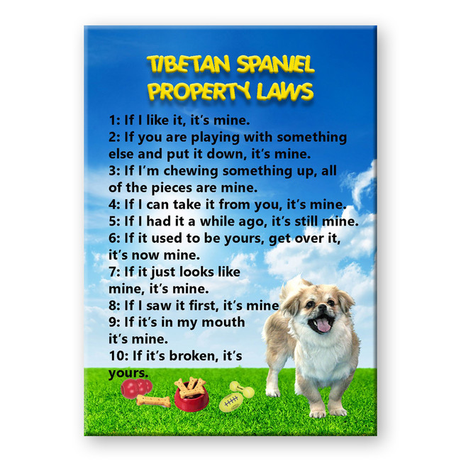 Tibetan Spaniel Property Laws Fridge Magnet