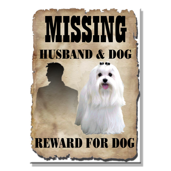 Maltese Husband Missing Reward Fridge Magnet