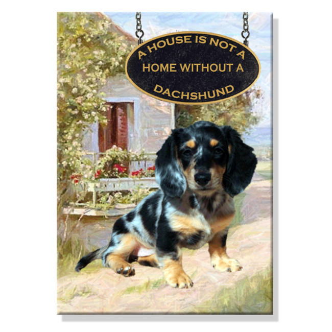 Dachshund a House is Not a Home Fridge Magnet No 6