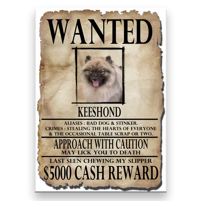 Keeshond Wanted Poster Fridge Magnet
