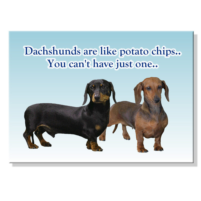 Dachshund Can't Have Just One Fridge Magnet