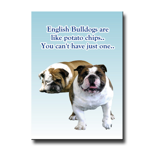 English Bulldog Can't Have Just One Fridge Magnet