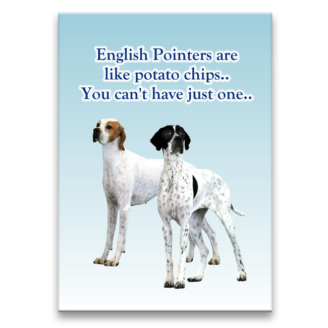 English Pointer Can't Have Just One Fridge Magnet