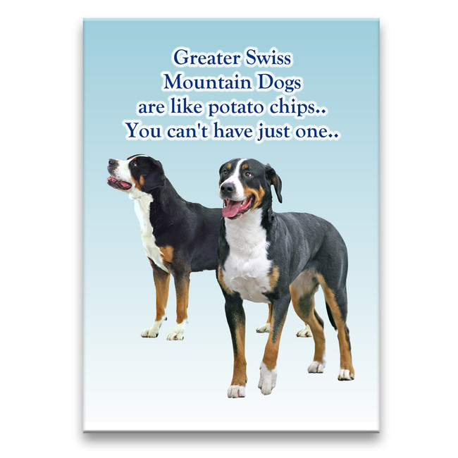 Greater Swiss Mountain Dog Can't Have Just One Fridge Magnet
