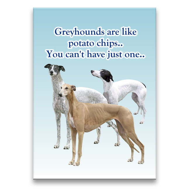 Greyhound Can't Have Just One Fridge Magnet