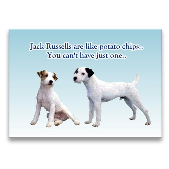 Jack Russell Can't Have Just One Fridge Magnet