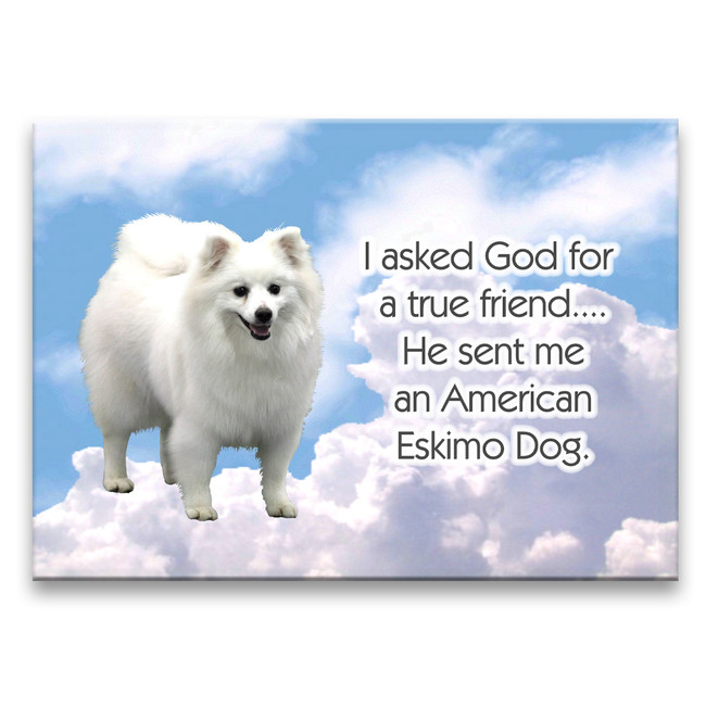 American Eskimo Dog True Friend Fridge Magnet