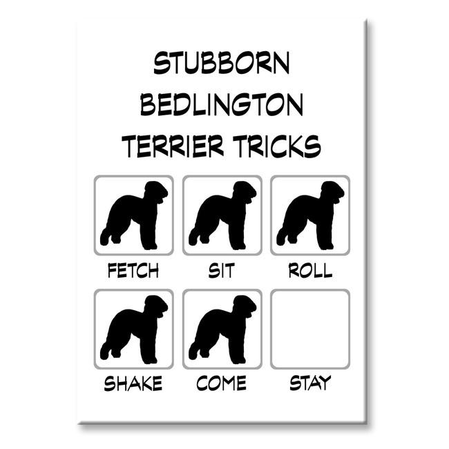 Bedlington Terrier Stubborn Tricks Fridge Magnet