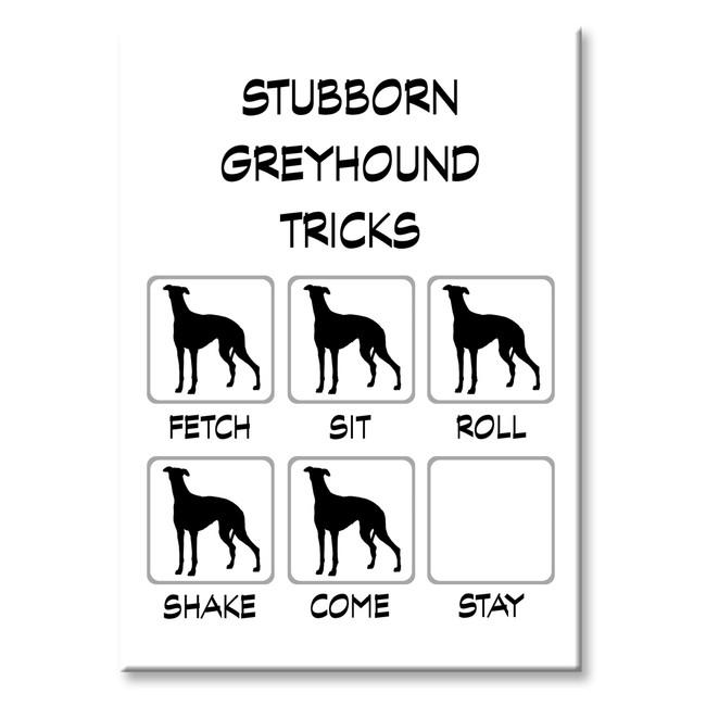 Greyhound Stubborn Tricks Fridge Magnet