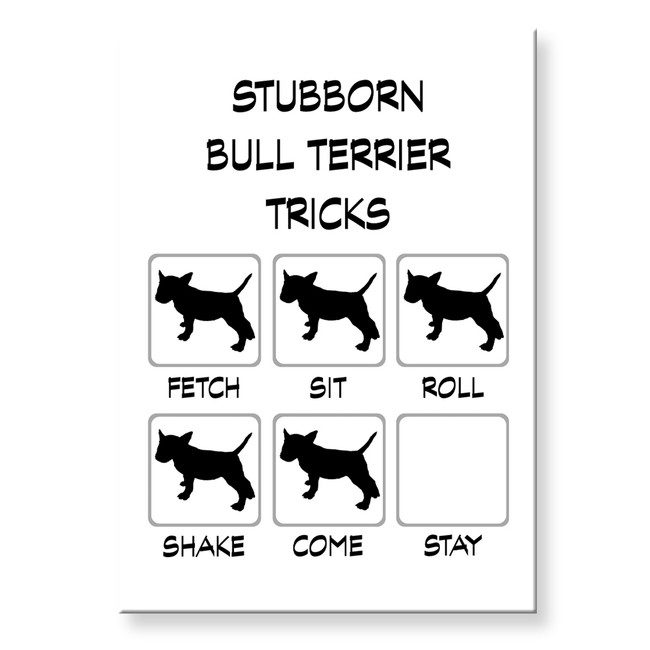 Bull Terrier Stubborn Tricks Fridge Magnet