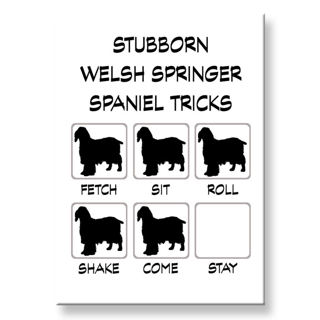 Welsh Springer Spaniel Stubborn Tricks Fridge Magnet