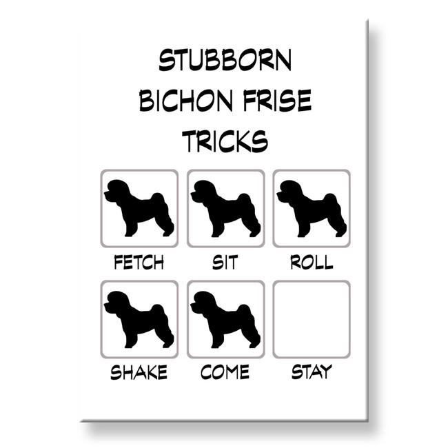 Bichon Frise Stubborn Tricks Fridge Magnet