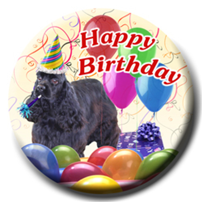 American Cocker Spaniel Happy Birthday Pin Badge No 2
