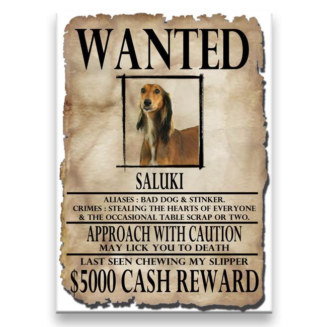 Saluki Wanted Poster Fridge Magnet