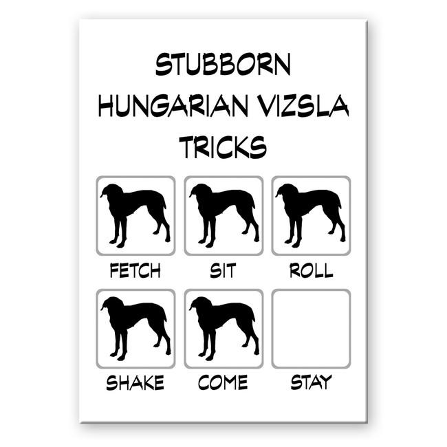 Hungarian Vizsla Stubborn Tricks Fridge Magnet