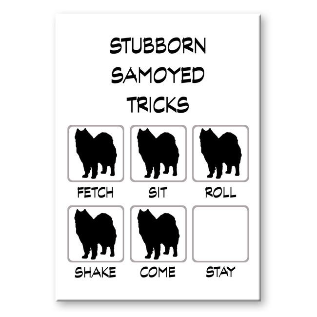 Samoyed Stubborn Tricks Fridge Magnet