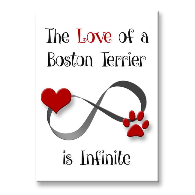 Boston Terrier Infinite Love Fridge Magnet