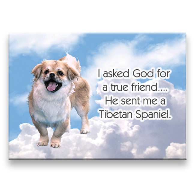 Tibetan Spaniel True Friend Fridge Magnet