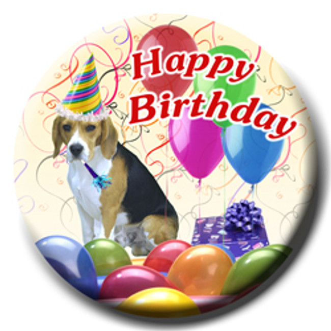 Beagle Happy Birthday Pin Badge