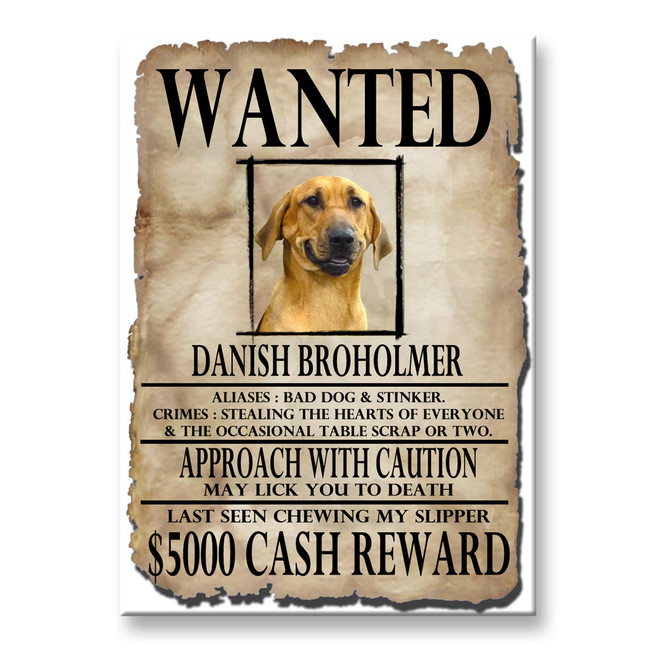 Danish Broholmer Wanted Poster Fridge Magnet