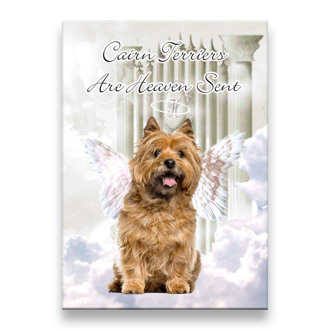 Cairn Terrier Heaven Sent Fridge Magnet No 2