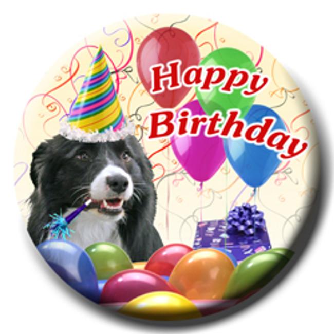 Border Collie Happy Birthday Pin Badge No 1