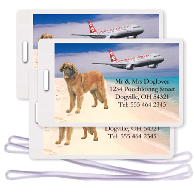 Leonberger Set of 3 Personalized Airplane Design Luggage Tags