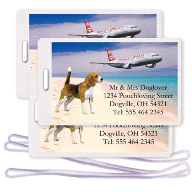 Beagle Set of 3 Personalized Airplane Design Luggage Tags