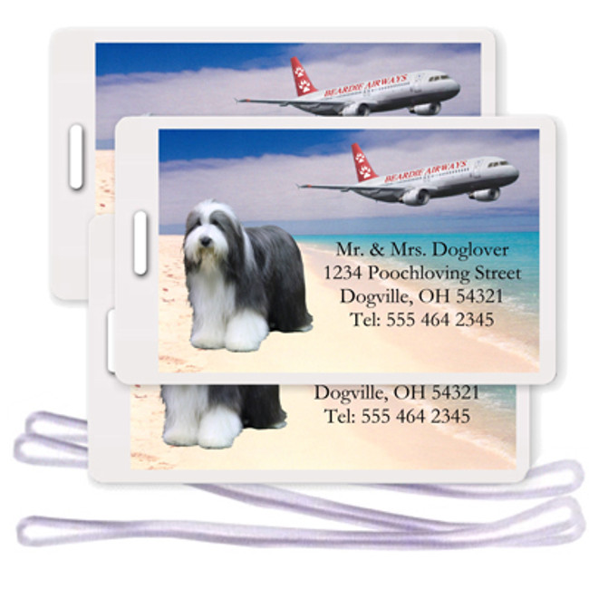 Bearded Collie Set of 3 Personalized Airplane Design Luggage Tags