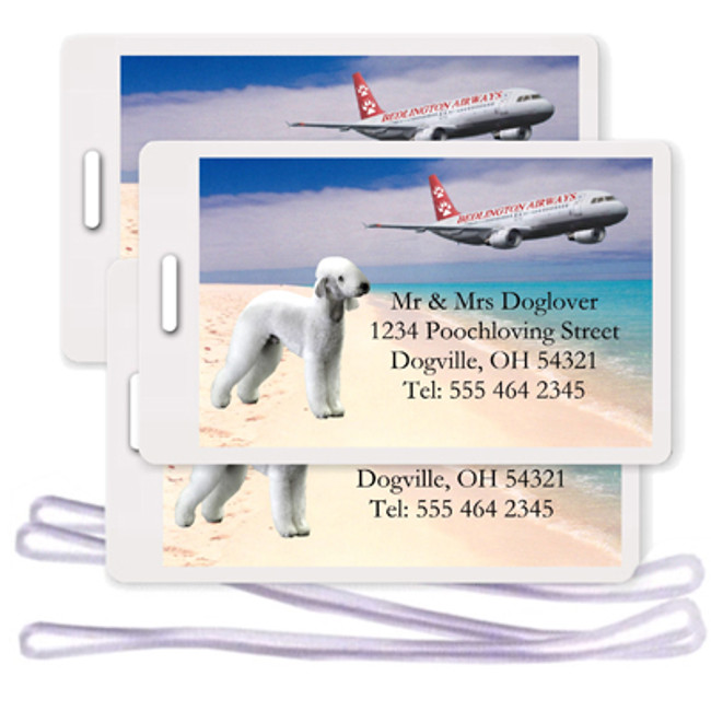 Bedlington Terrier Set of 3 Personalized Airplane Design Luggage Tags