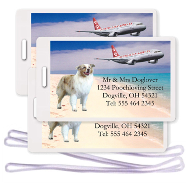 Australian Shepherd Dog Set of 3 Personalized Airplane Design Luggage Tags