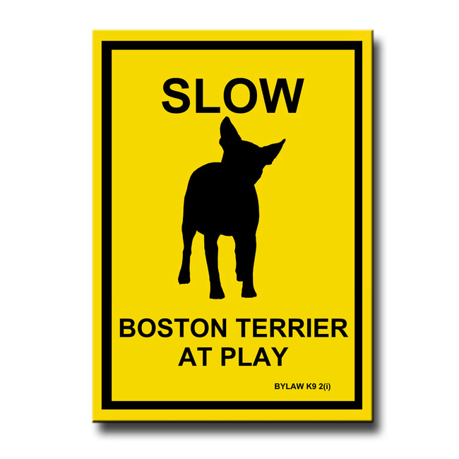 Boston Terrier Slow at Play Fridge Magnet