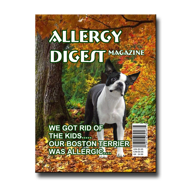Boston Terrier Rid of Kids Allergy Fridge Magnet