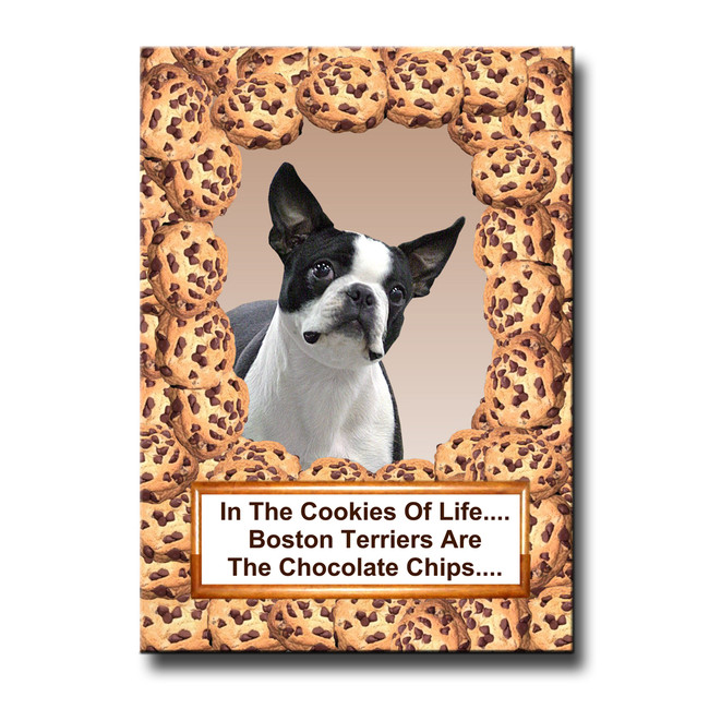 Boston Terrier Cookie Choc Chip Fridge Magnet No 1