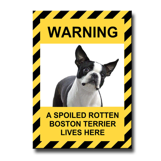 Boston Terrier Spoiled Rotten Fridge Magnet