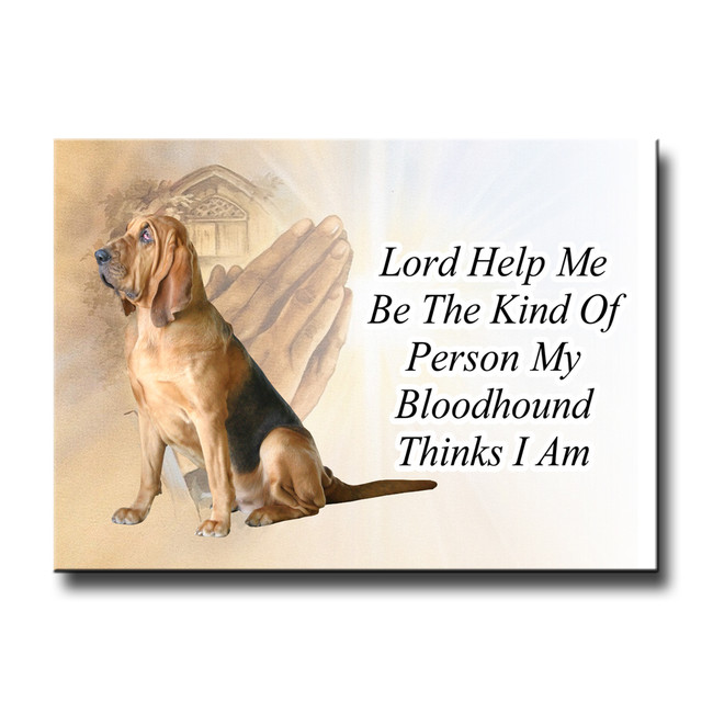 Bloodhound Lord Help Me Be Fridge Magnet