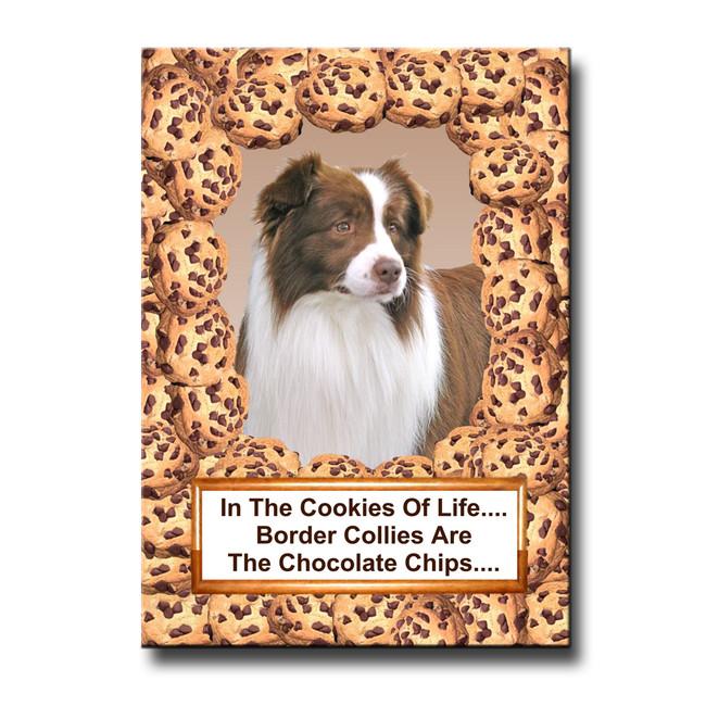 Border Collie Cookie Choc Chip Fridge Magnet No 2