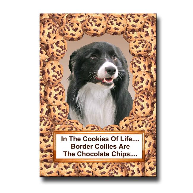 Border Collie Cookie Choc Chip Fridge Magnet No 1