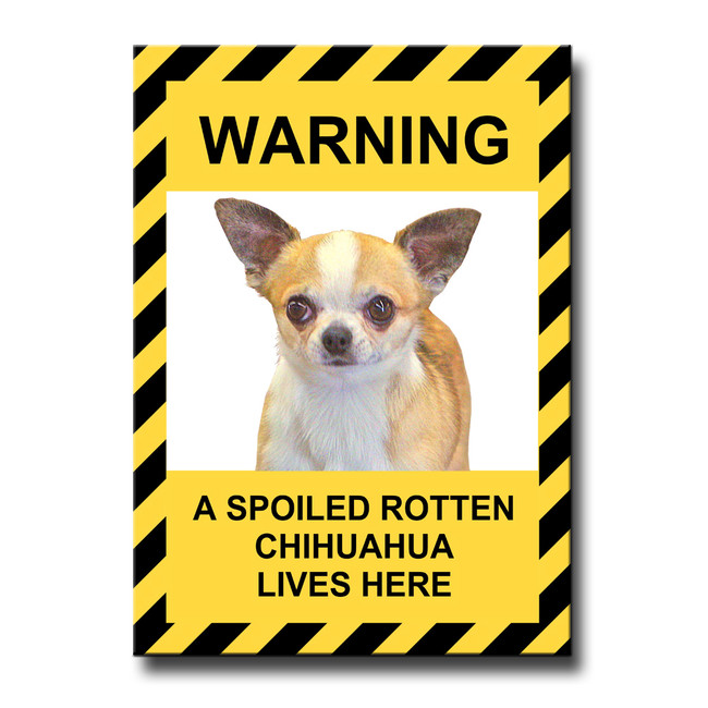 Chihuahua Spoiled Rotten Fridge Magnet No 1