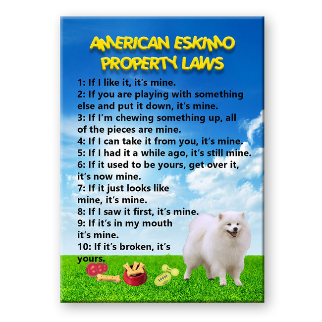 American Eskimo Dog Property Laws Fridge Magnet