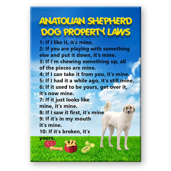 Anatolian Shepherd Dog Property Laws Fridge Magnet