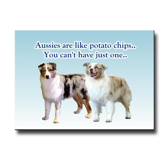 Australian Shepherd Dog Can't Have Just One Fridge Magnet