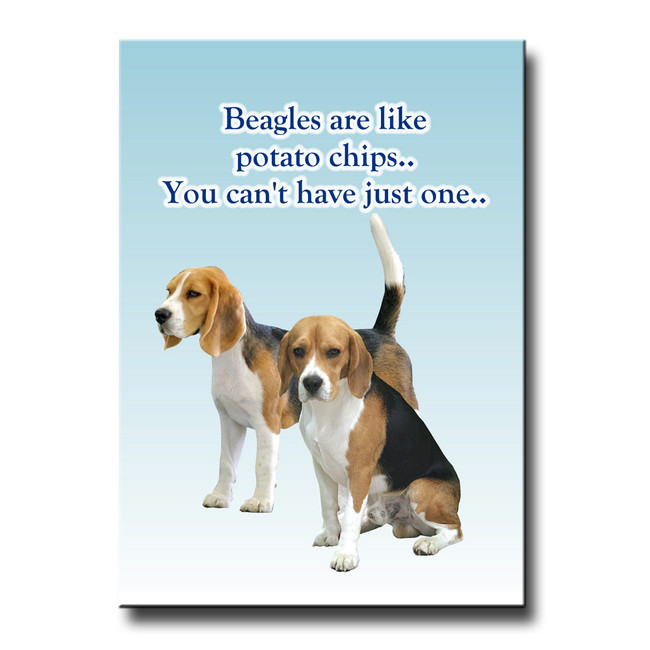 Beagle Can't Have Just One Fridge Magnet