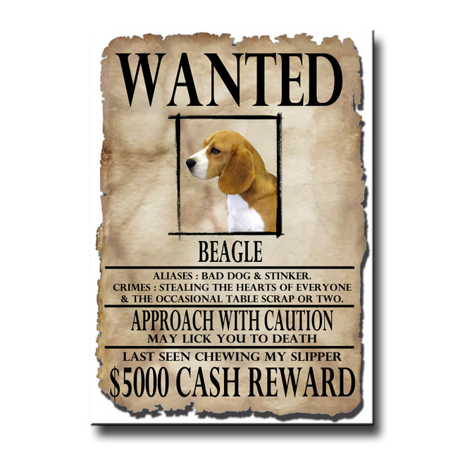 Beagle Wanted Poster Fridge Magnet