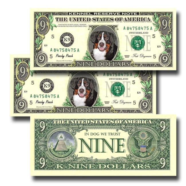 Bernese Mountain Dog Pack of 3 Novelty Nine Dollar Bills