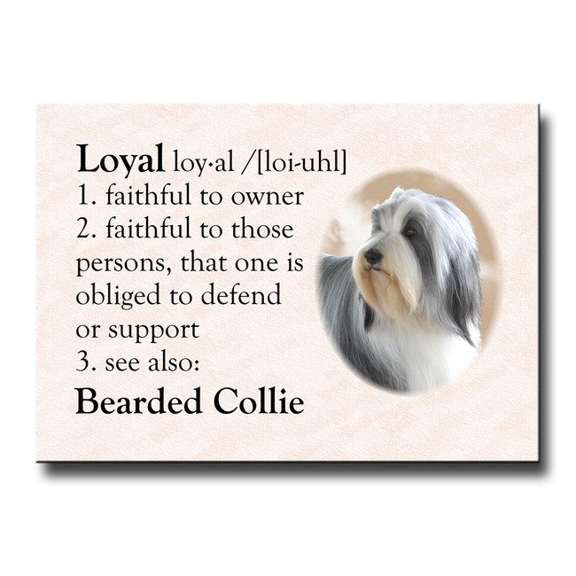 Bearded Collie Dictionary Loyal Fridge Magnet