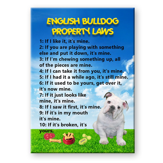 English Bulldog Property Laws Fridge Magnet No 3