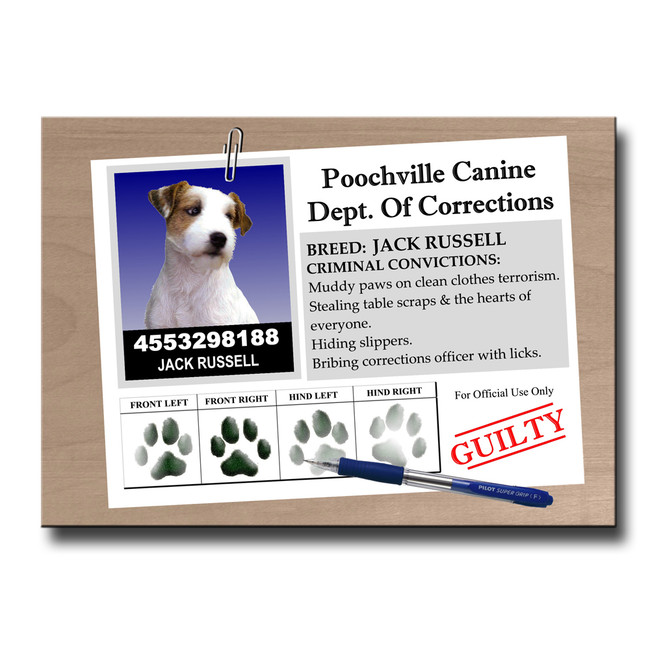 Jack Russell Terrier Rap Sheet Fridge Magnet